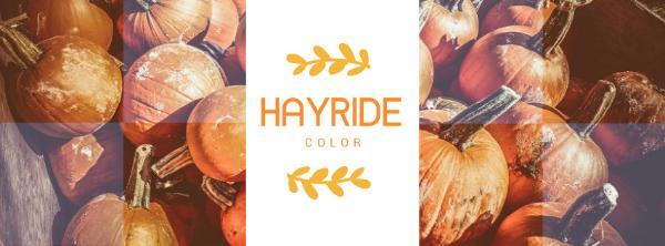 HAYRIDE_copy_CY_20170114