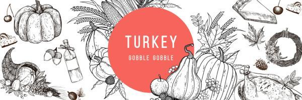 TURKEY_copy_CY_20170210