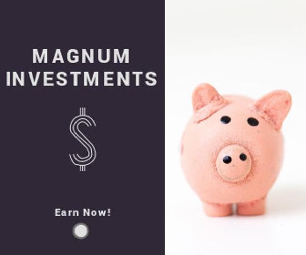 MAGNUM INVESTMENTS_copy_zyw_20170208