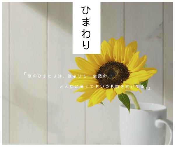 向日葵_copy_hzy_170118_06