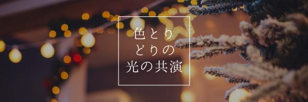 色とり どりの 光の共演_copy_CY_20170116