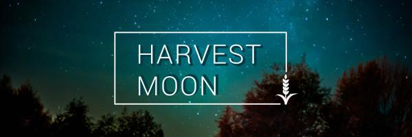HARVEST MOON_copy_CY_20170117