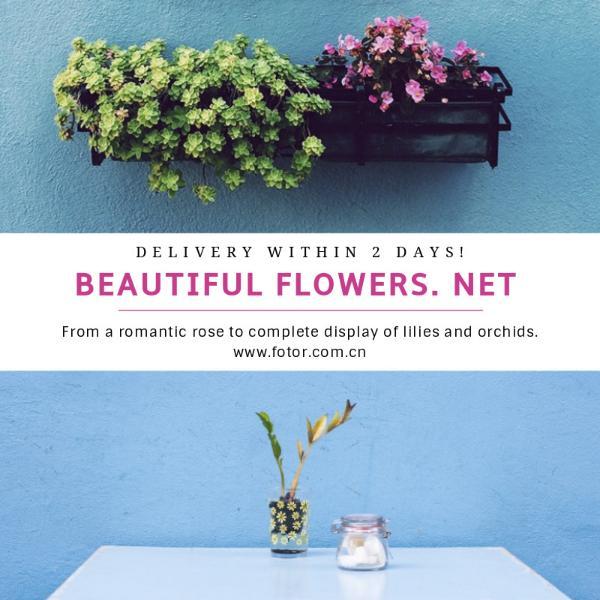 flower_copy_hzy_170118_04
