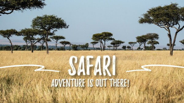 safari_lsj_20210219