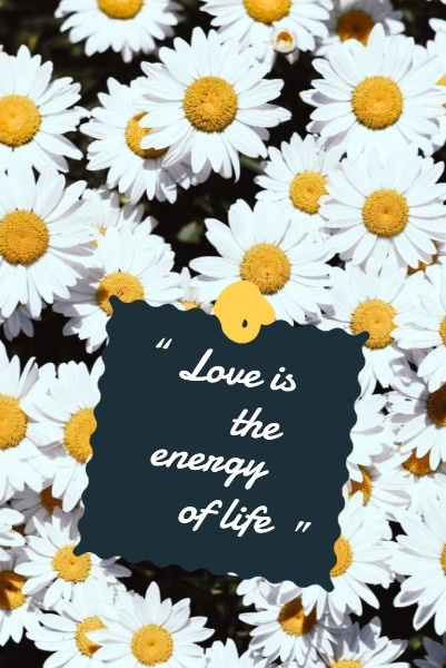 White And Yellow Daisy Flower Quote
