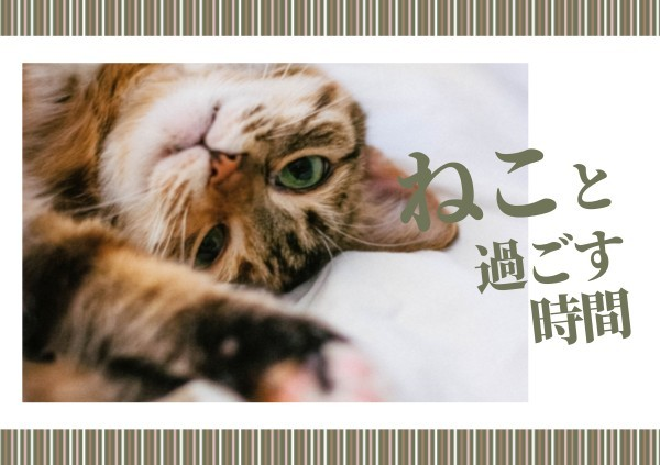 cat_lsj_20200226_tm同步