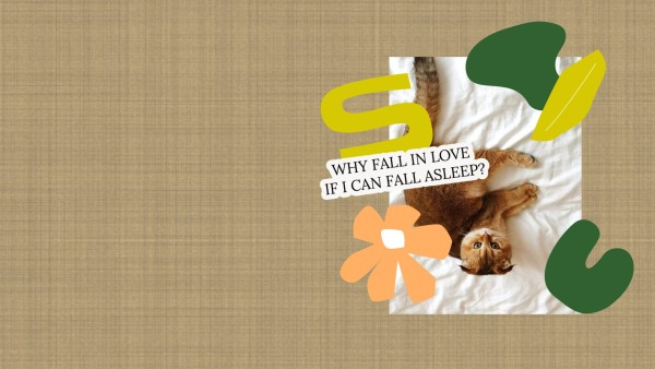 Brown Cat Love Quote Wallpaper