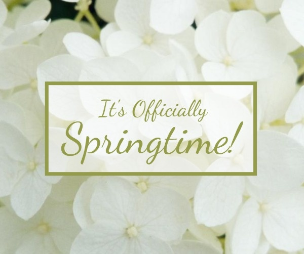SpringTime_xyt_20200210