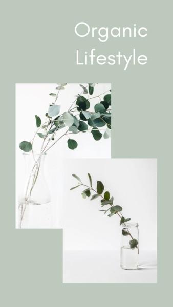 极简植物_tm_20200701