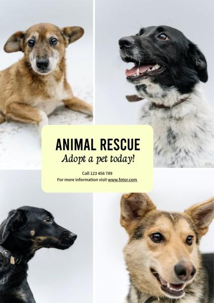 rescue_wl_20210412