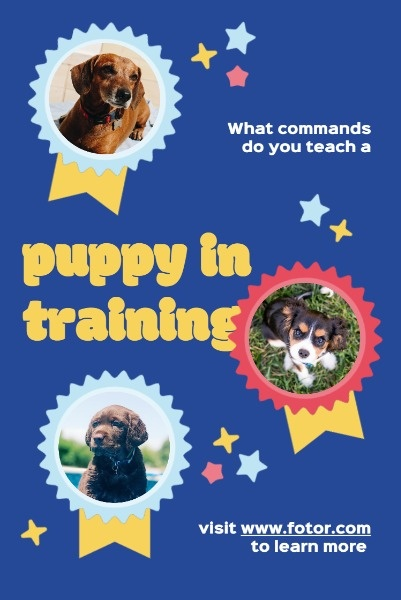 Blue Puppy Training Service Ads