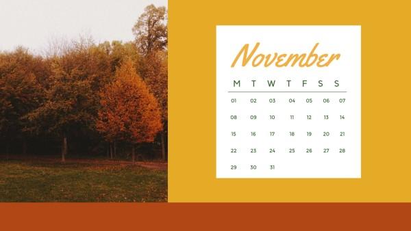 November_wl_20201221