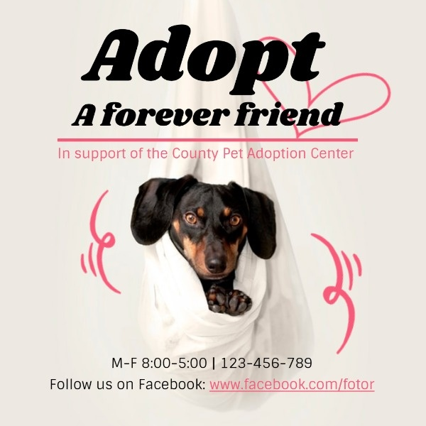 adopt_wl_20200109
