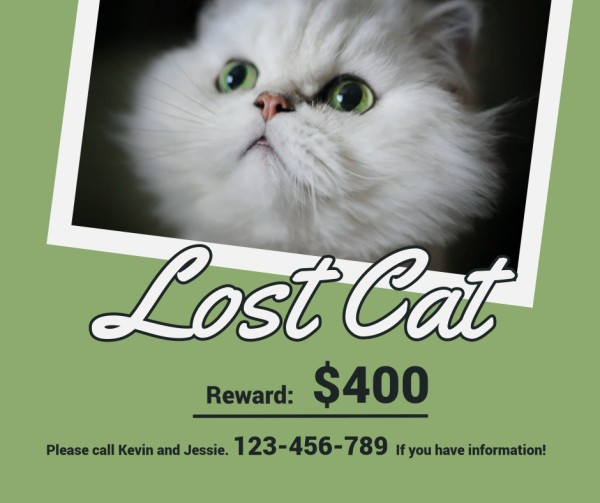 lost cat-tm-21035