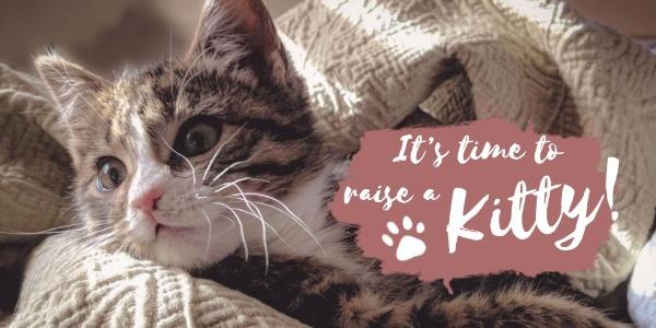 kitty_lsj_20191220