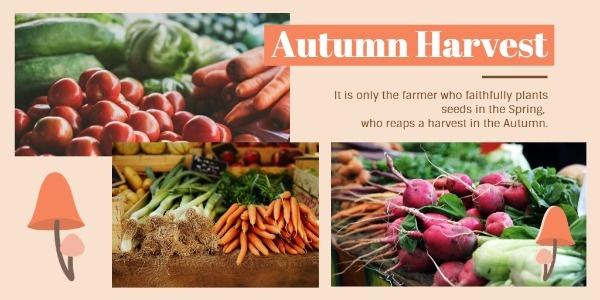 harvest_tp_lsj_20181106