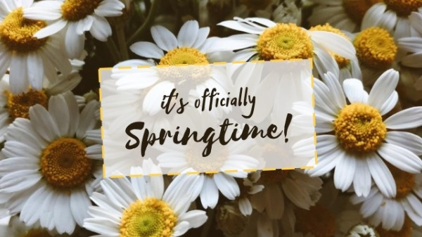 Sunflower Spring Time Quote