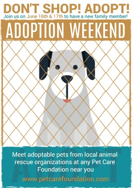 Cute Pet Adoption