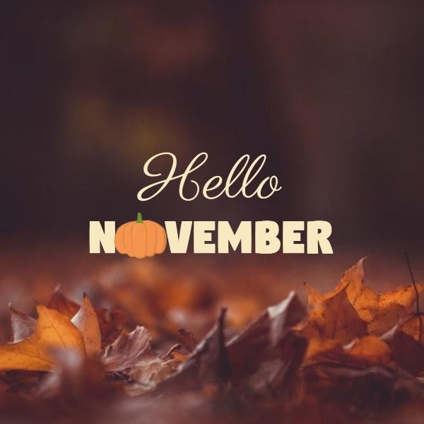 November1_wl_20181101