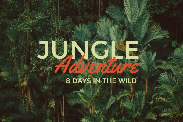 jungle_wl_20190118
