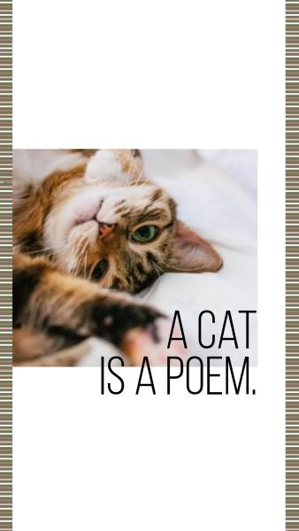 cat_lsj_20200226