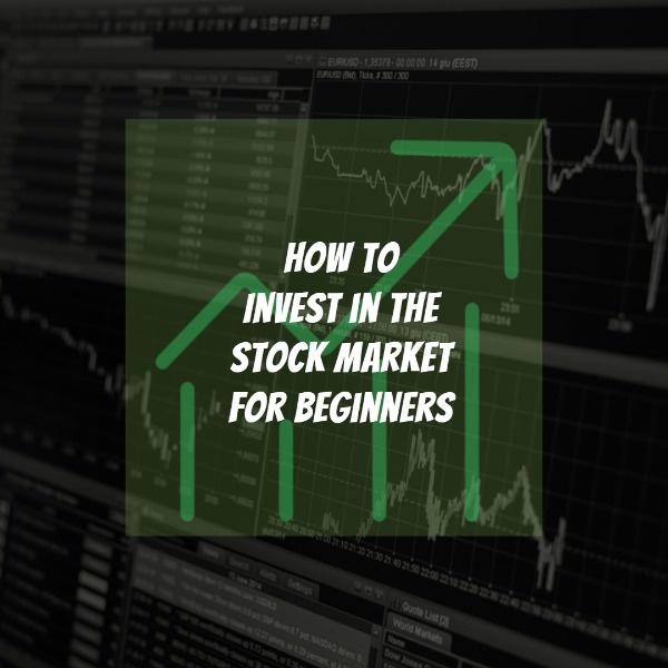 beginners_wl_20190222