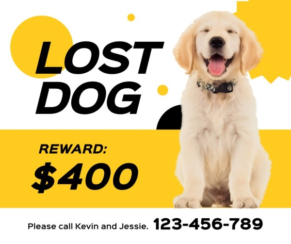 lost dog-tm-21035