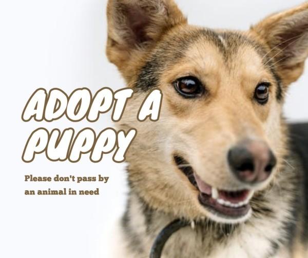 puppy_wl_20210412