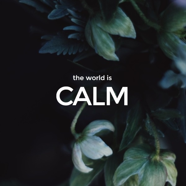 calm_lsj_20200714