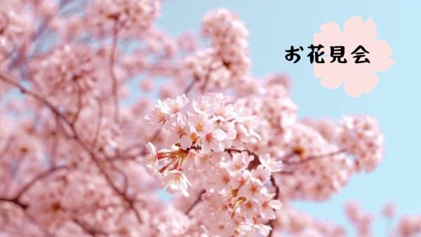 花见会_wl_20210222