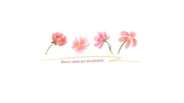 flower_wl_20210308