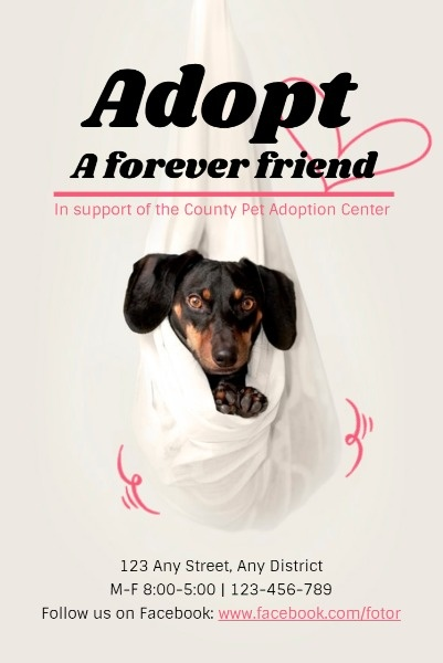 White Background Of Animal Adoption Center Poster