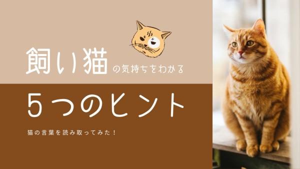 22_wl_20210308-jp-localised