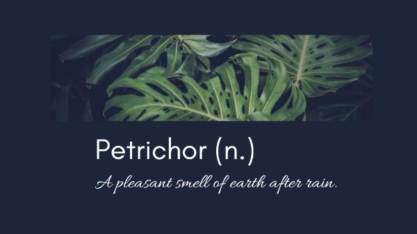 Black Petrichor