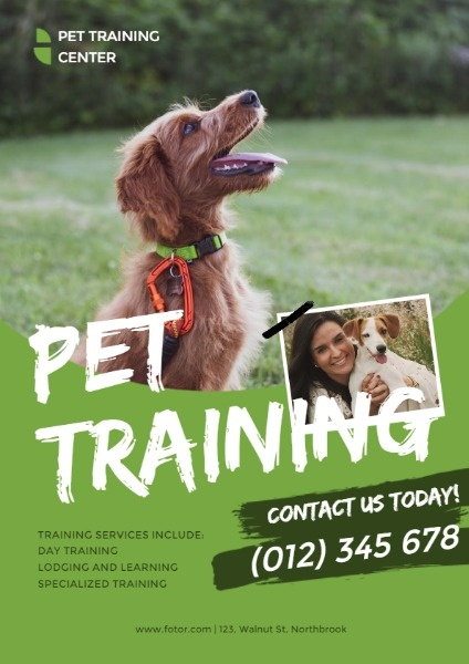 Green Pet Training Ads