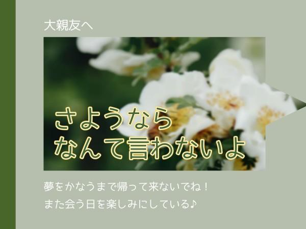 大亲友_lsj_20210219