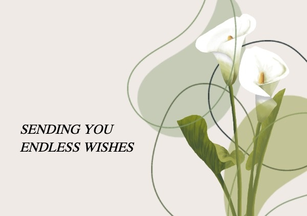 White Spring Floral Wishes Postcard