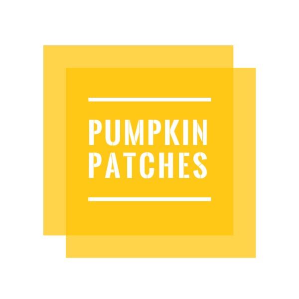 pumpkin_wl20180504
