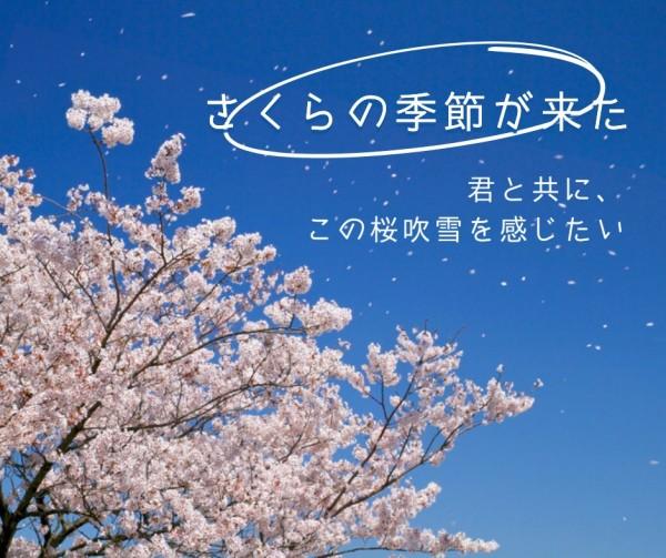 季节_wl_20210222_wl同步