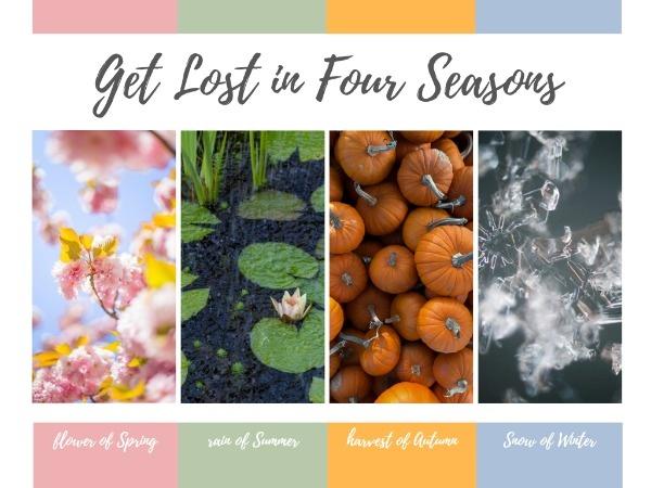 seasons_c_lsj_20181106