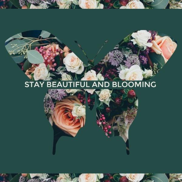 Bloom_xyt_20200209