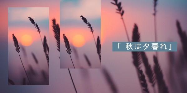 秋天3_wl_20181108