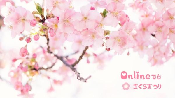 赏花2_lsj_20210219