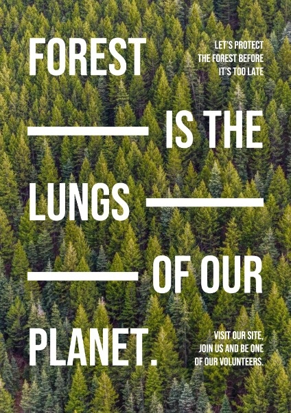 Simple Forest Care