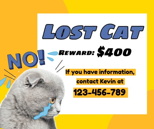 lost cat-tm-210322