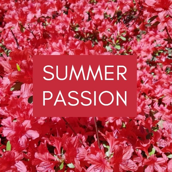 passion_wl_20200714