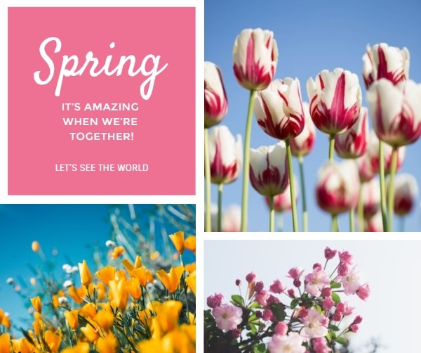 spring_wl_20200228