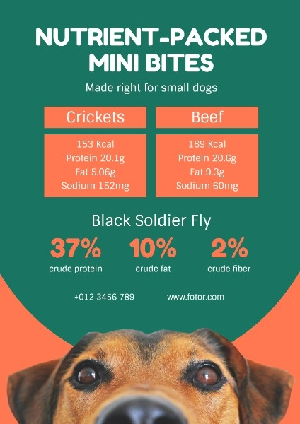 Green And Orange Pet Food Sale