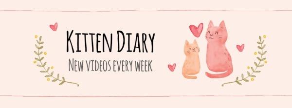 Kitten Diary
