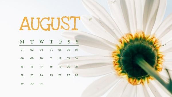 august_wl_20200527